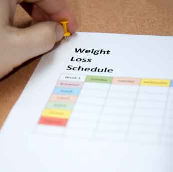 weight loss schedule